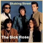 Shaking Street, il devastante garage sound dei Sick Rose